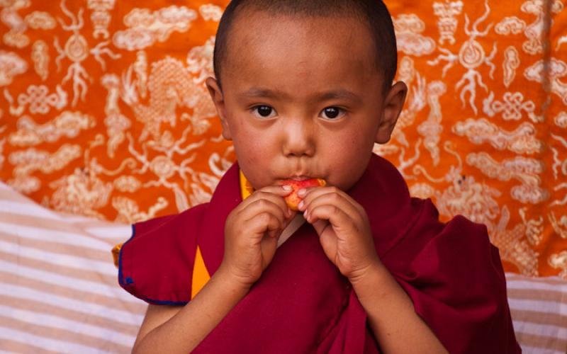 Young monk Ladakh